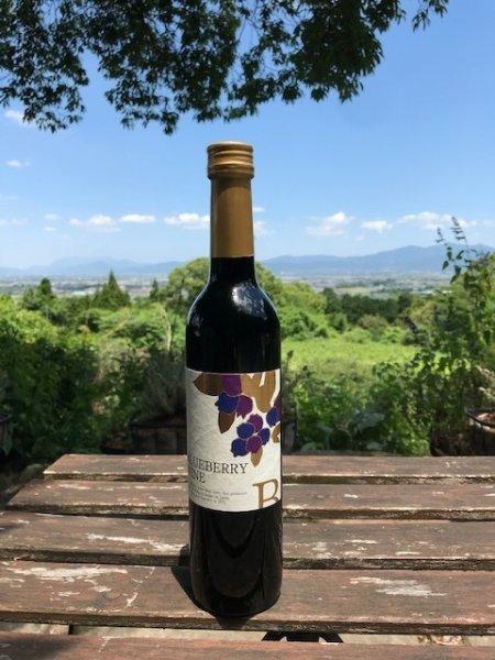 画像1: 【ブルーベリーワイン】 ブルーベリーワイン 甘口 7% 360ml  (1)