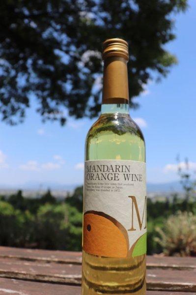 画像1: 【フルーツワイン】 マンダリン 500ml  (1)