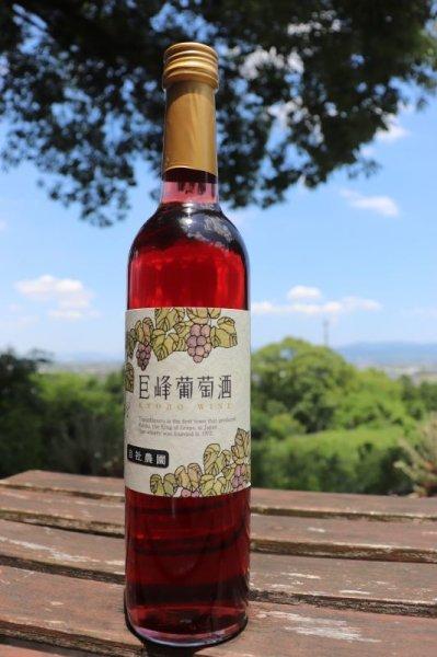 画像1: 【赤ワイン】 巨峰葡萄酒 ルージュ 12% 360ml  (1)
