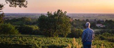 画像1: 【白・辛口・スパークリングワイン】Cà Rovere Blanc de Blanc Brut  MIL.2015 750ml 1本